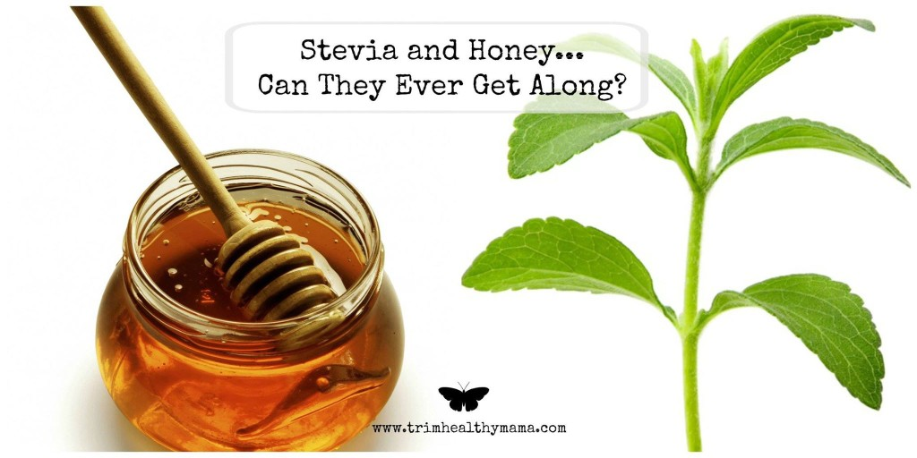 Stevia and Other Sweeteners – THM com